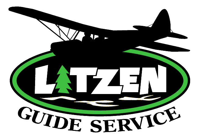 Alaska Brown Bear Hunts - Litzen Guide Service